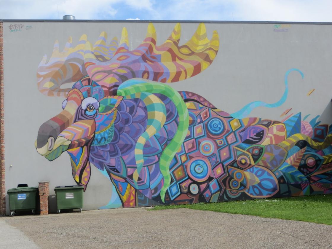 Viljandi vingeim grafiti