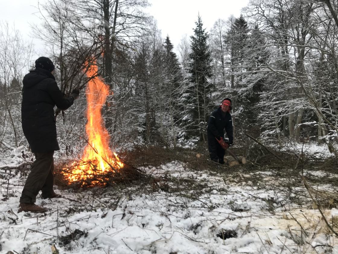 30 aastat ühist metsategu