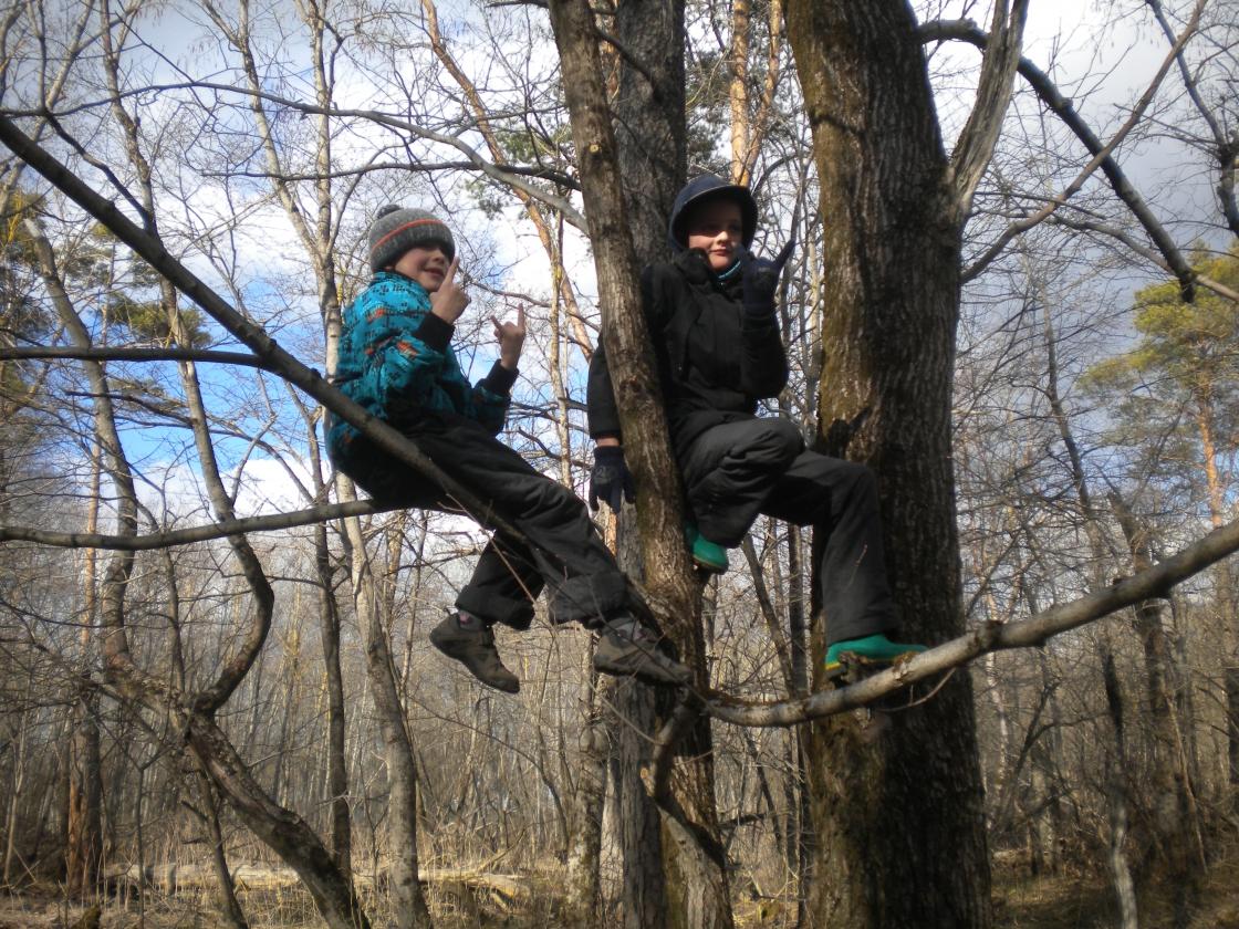 Sõbrad puu otsas