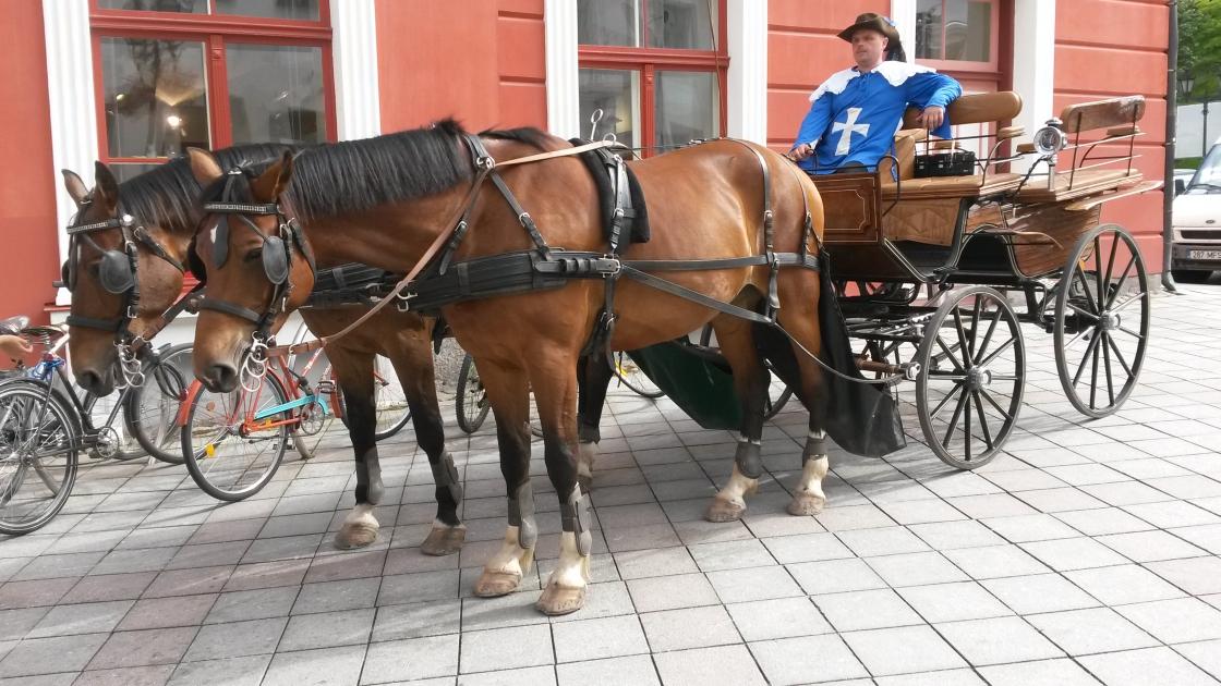 Hansapäev Tartus