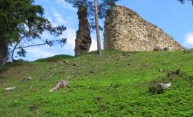 Vastseliina linnuse varemed