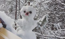 Kas me lumememme teeme?